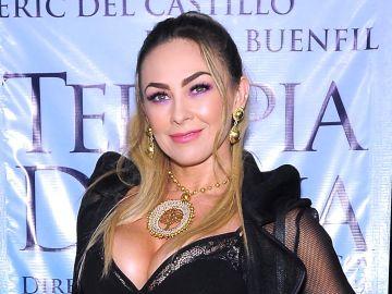 Aracely Arámbula   Mezcalent