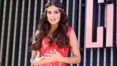 Ximena Navarrete, ex Miss Universo   Mezcalent